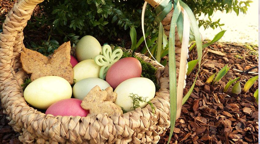 Fiesta de pascua en el jardín