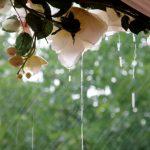 Os cuento un secreto: el día de mi boda llovió