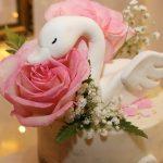 Un cumpleaños de cisne para Mía